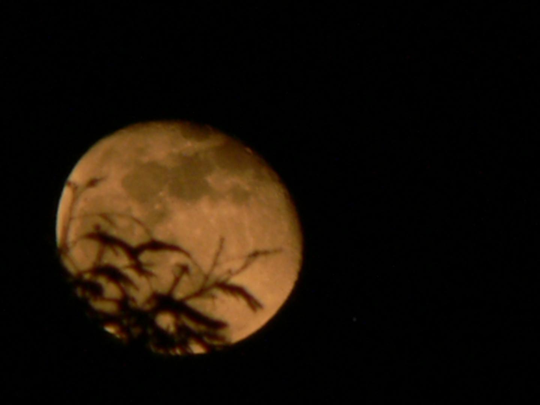 Luna de Mayo 2