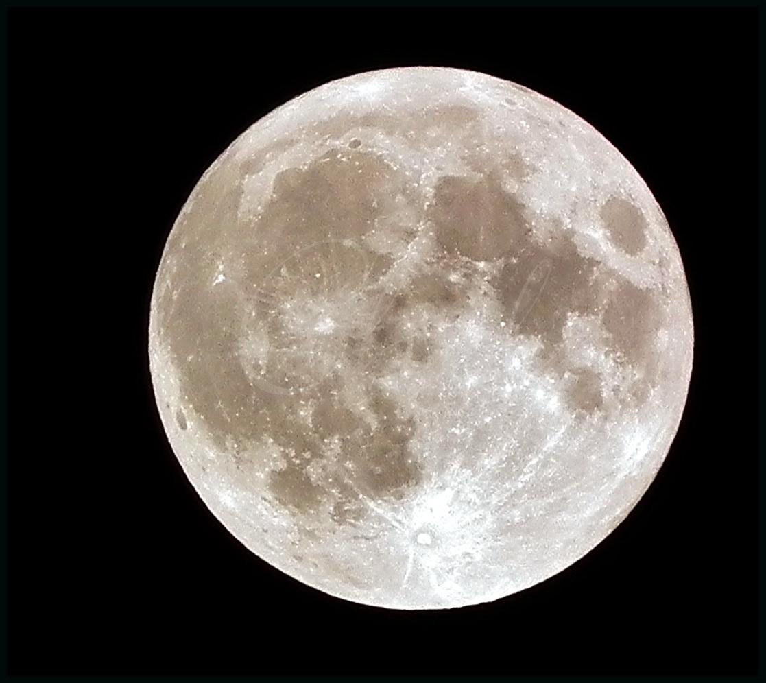 Luna llena de mayo!