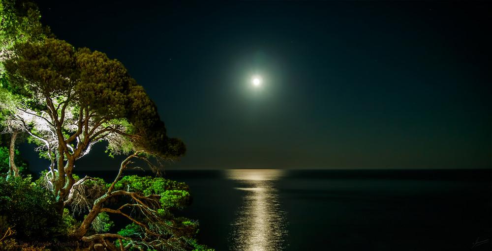 Luna llena (Parador Aiguablava Costa Brava Begur Catalunya)