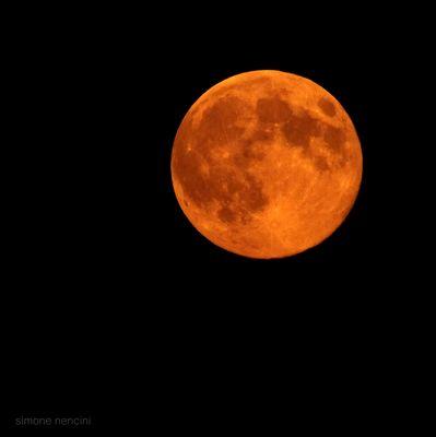 """Luna """"Orange""""."""