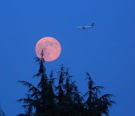 Luna rosa del 23 giugno