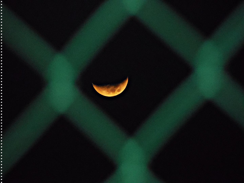 Luna tras la malla.
