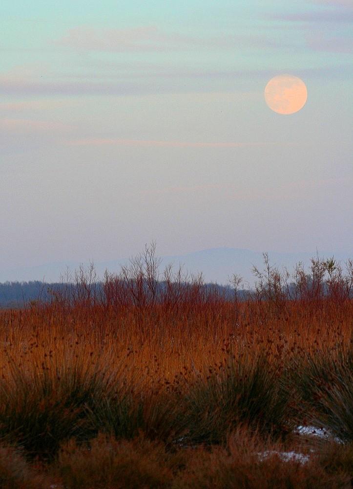 Lune plaine, pleine lune...