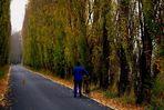 L'Uomo il Cane la.... Bicicletta
