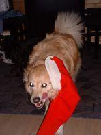 Lupina die stolze Spanierin...und die Sache mit dem Weihnachtsmann....