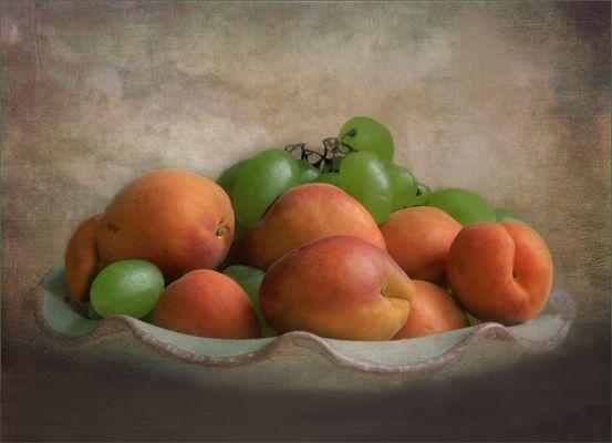 Lust auf Aprikosen