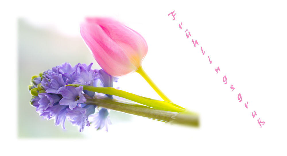 Lust auf den Frühling..............