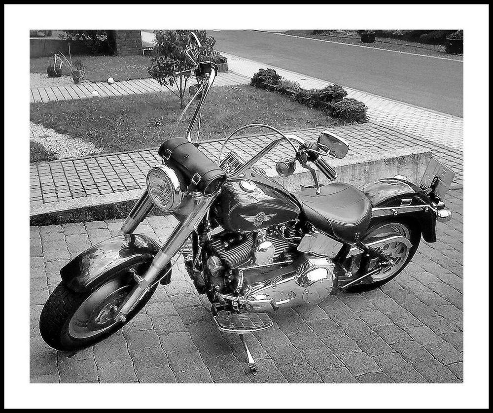 Lust auf Harley??