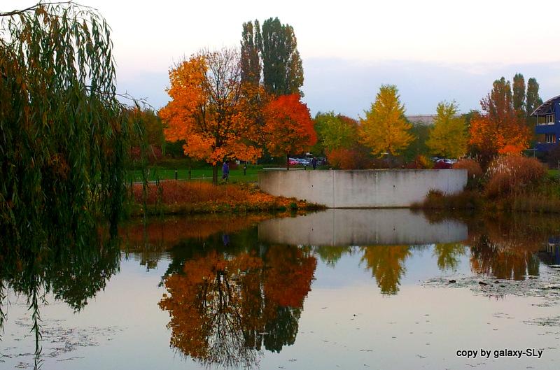 Lust auf Herbst