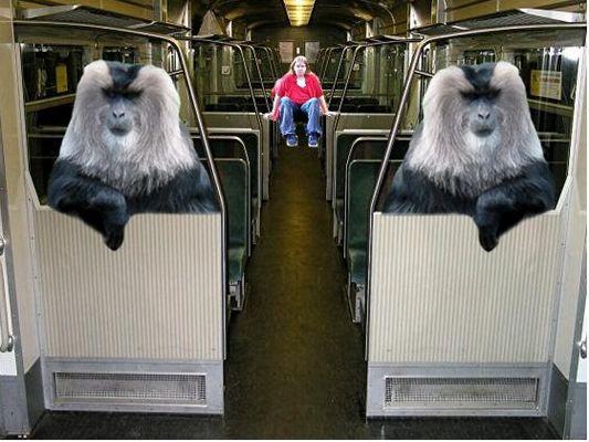 Lustige S-Bahn