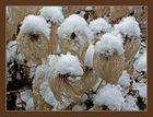 Lustige Wesen mit Schneehüten