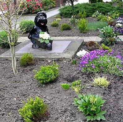 lustiger Gartenzwerg