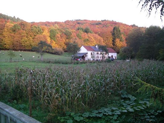 Luxemburg 2004