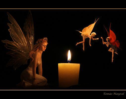 Luz de Hadas