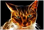Luzifers Katze