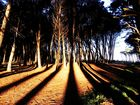 luz,sombras y arena