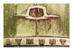 .lymout.