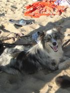 Lynni relaxed am Strand