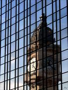 Lyon en cage