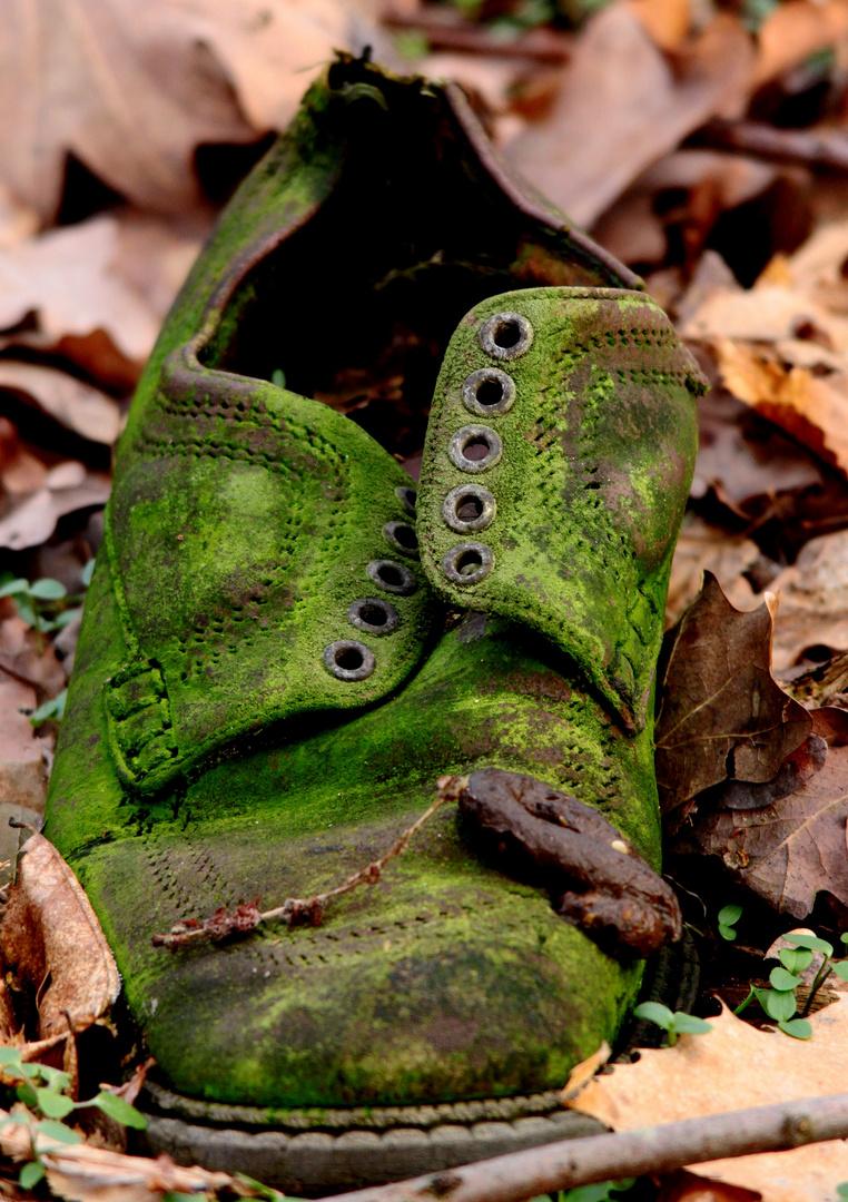 M............. ou sont mes Chaussures