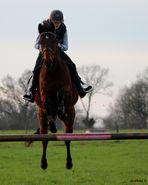 ma fille et son cheval