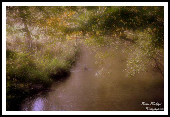 Ma petite rivière a truites !!!!!!!!!!!!!!!!!