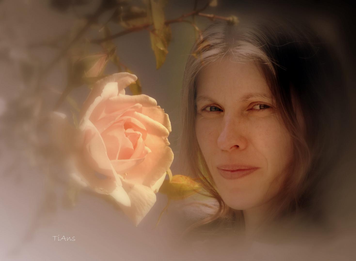 ma rose 2