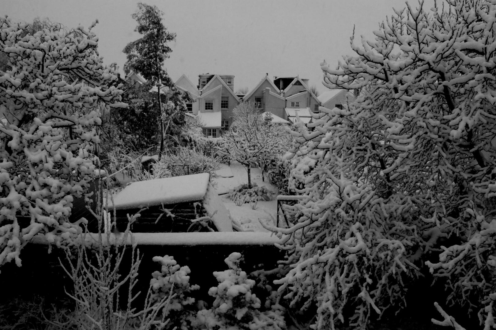 Mañana nevada...
