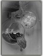 Maceteros en vidrio