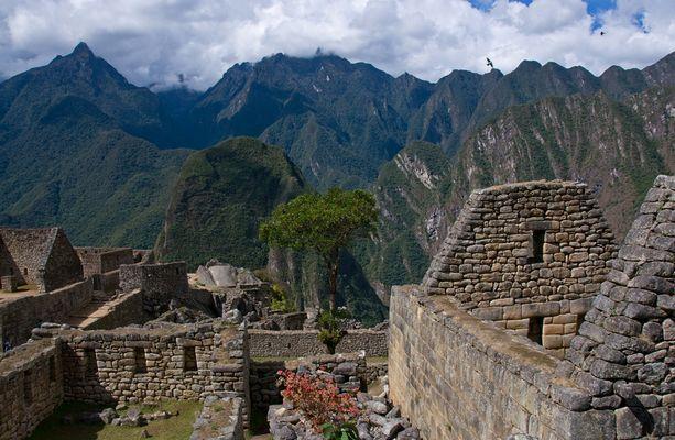 Machu Picchu Impressionen - 5 -