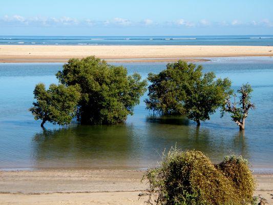 Madagascar, plage paisible...