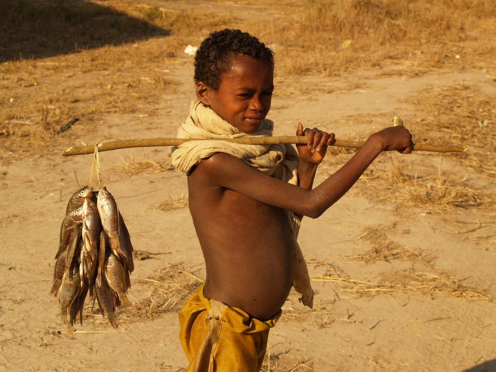 Madagaskar 5