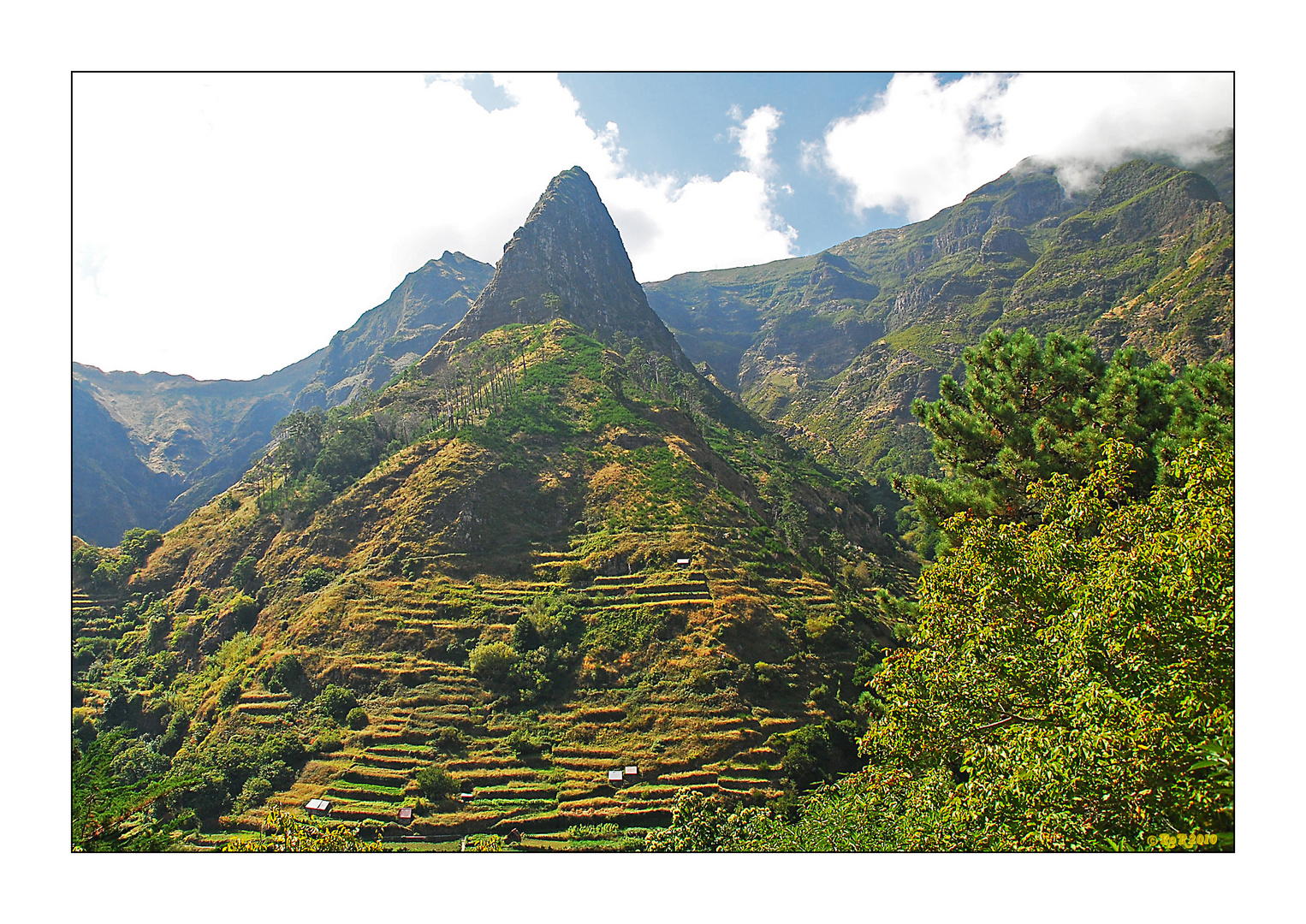 Madeira 2009 (III)