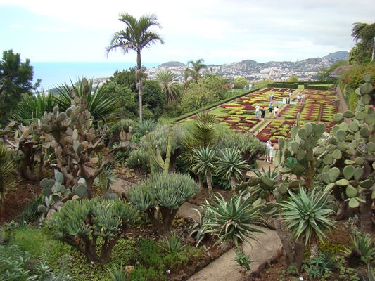 Madeira 23