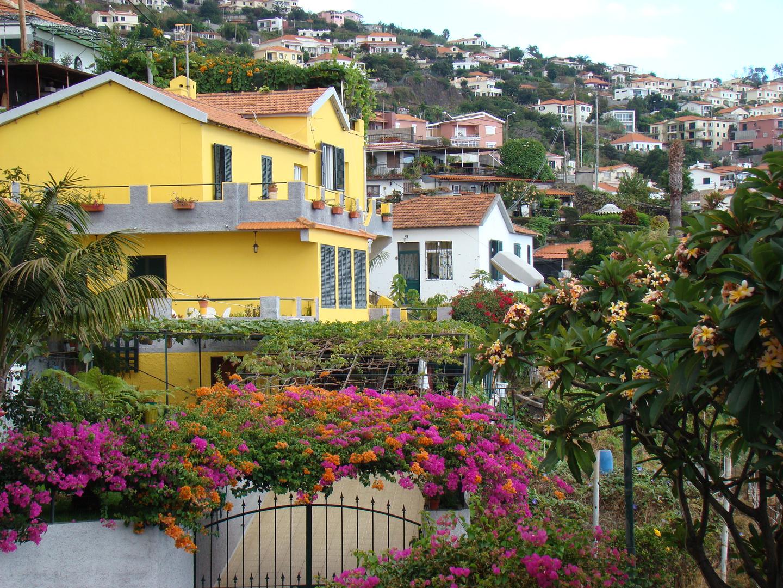 Madeira 30