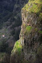 Madeira - Nonnental