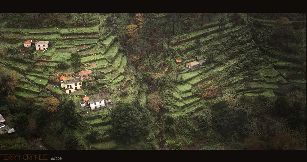 Madeira Visions_7