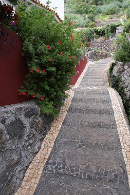 Madeira ; Weg ins Ungewisse...