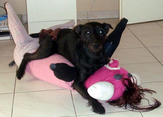 madi et le cochon