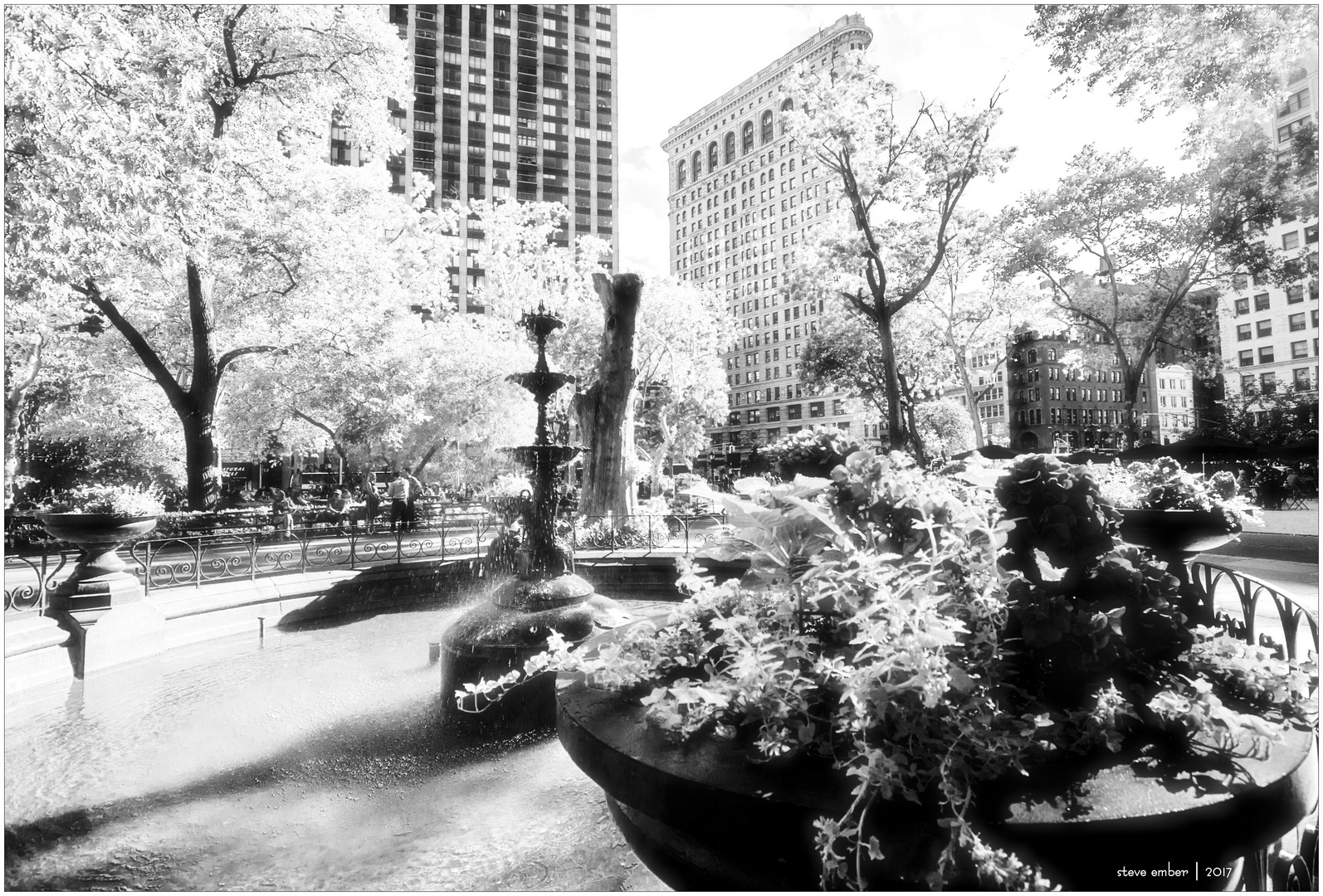 Madison Square Park Summer - No. 1