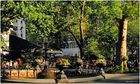 Madison Square Park Summer - No. 3