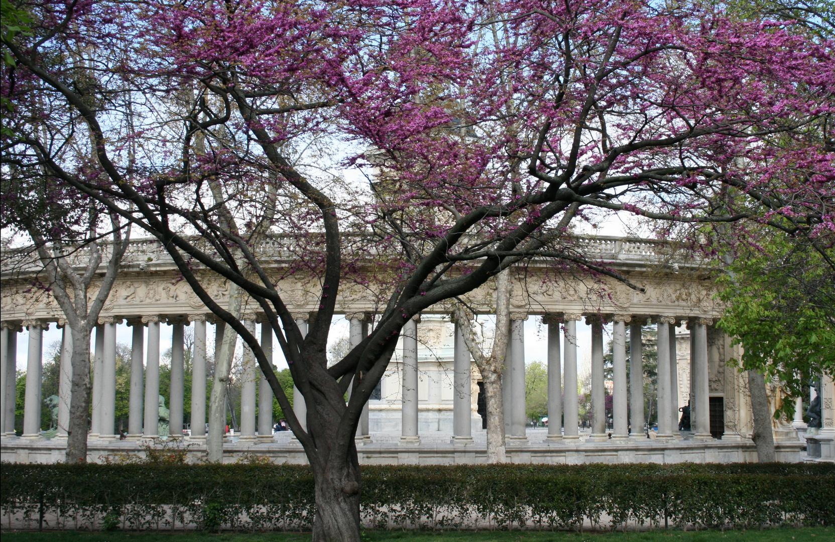 Madrid im Frühling