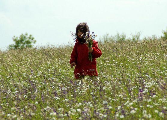 Mädchen auf der Blumenwiese