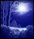 Märchenhafte Lichtung