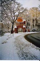 Märchenhafter Winter...