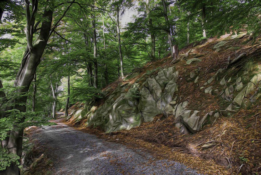 Märchenwald am Melibukus I