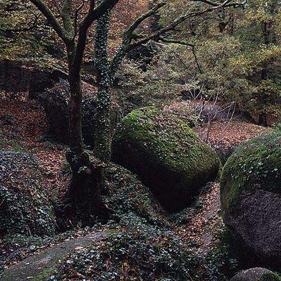 Märchenwald von Huelgoat