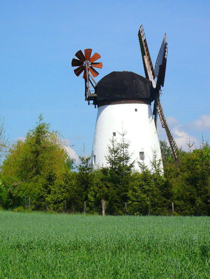 märkische Windmühle