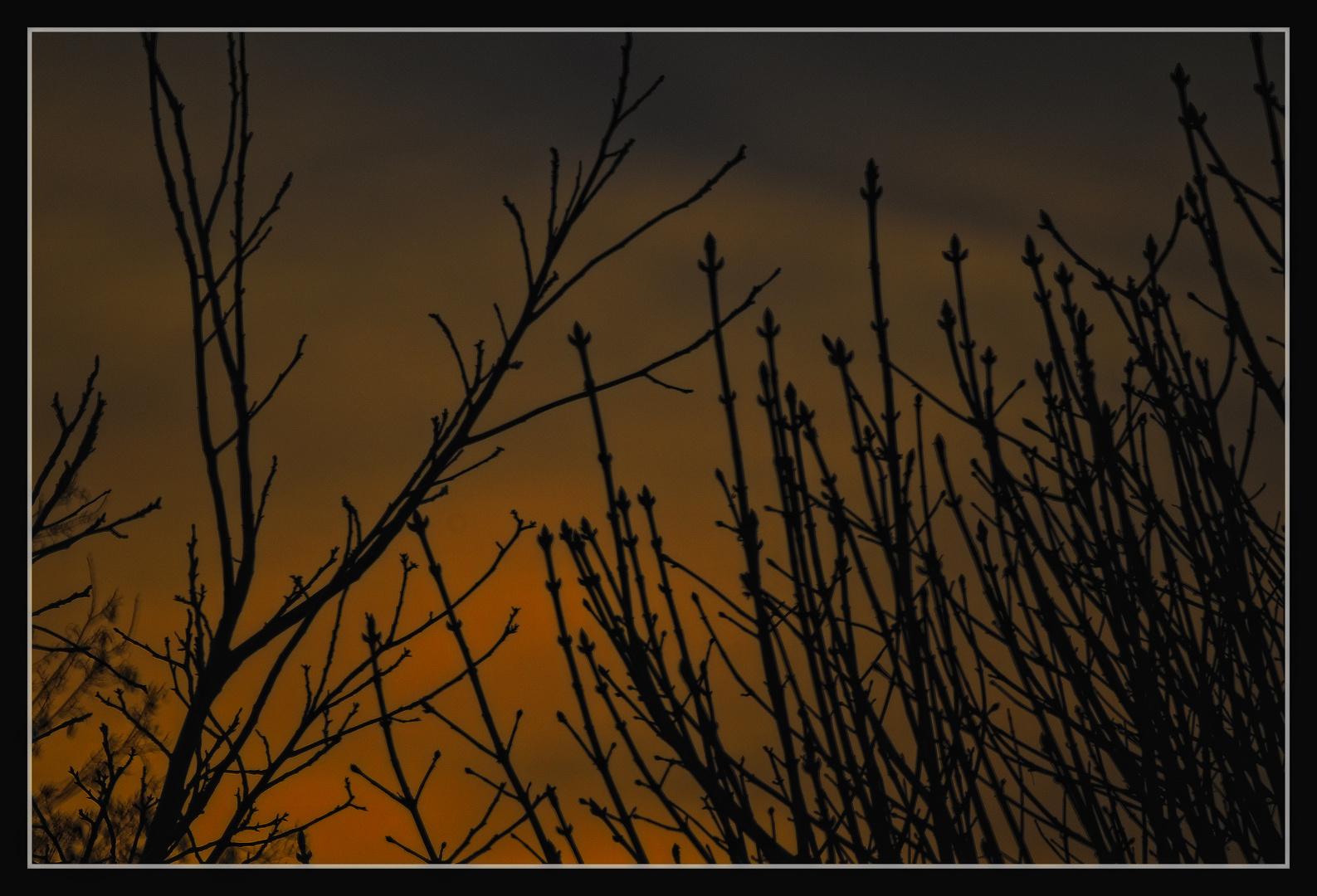 März-Abend