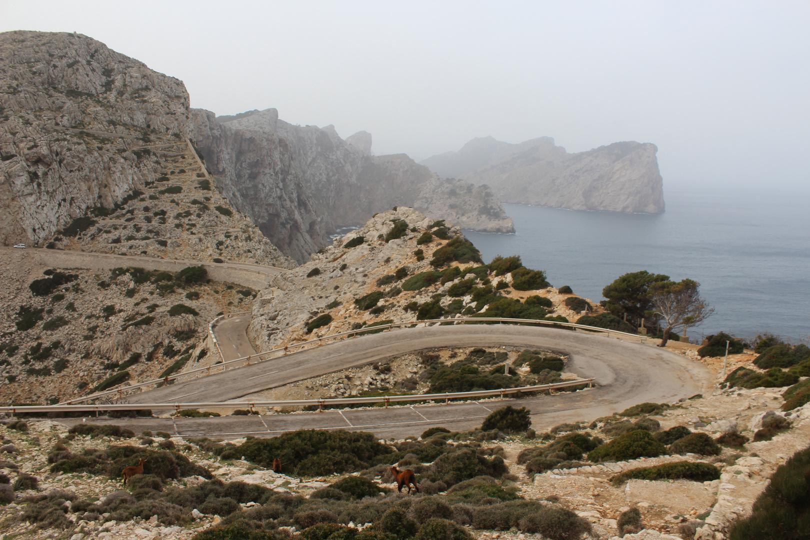 März am Kap Formentor
